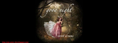 sms pour dire good night